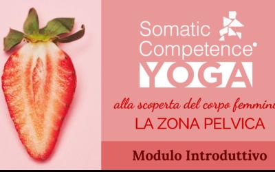 Somatic Competence® Yoga   La zona pelvica